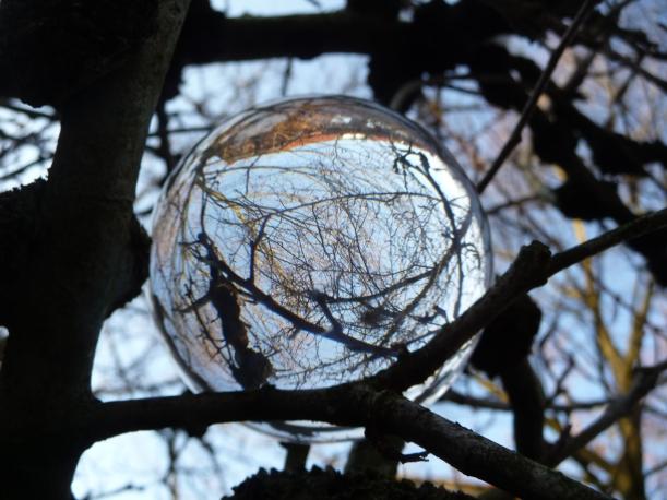 Im Baum schwebend